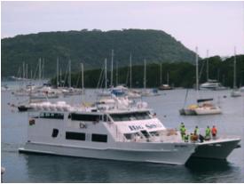 6Girl, Unspotted -- Vanuatu