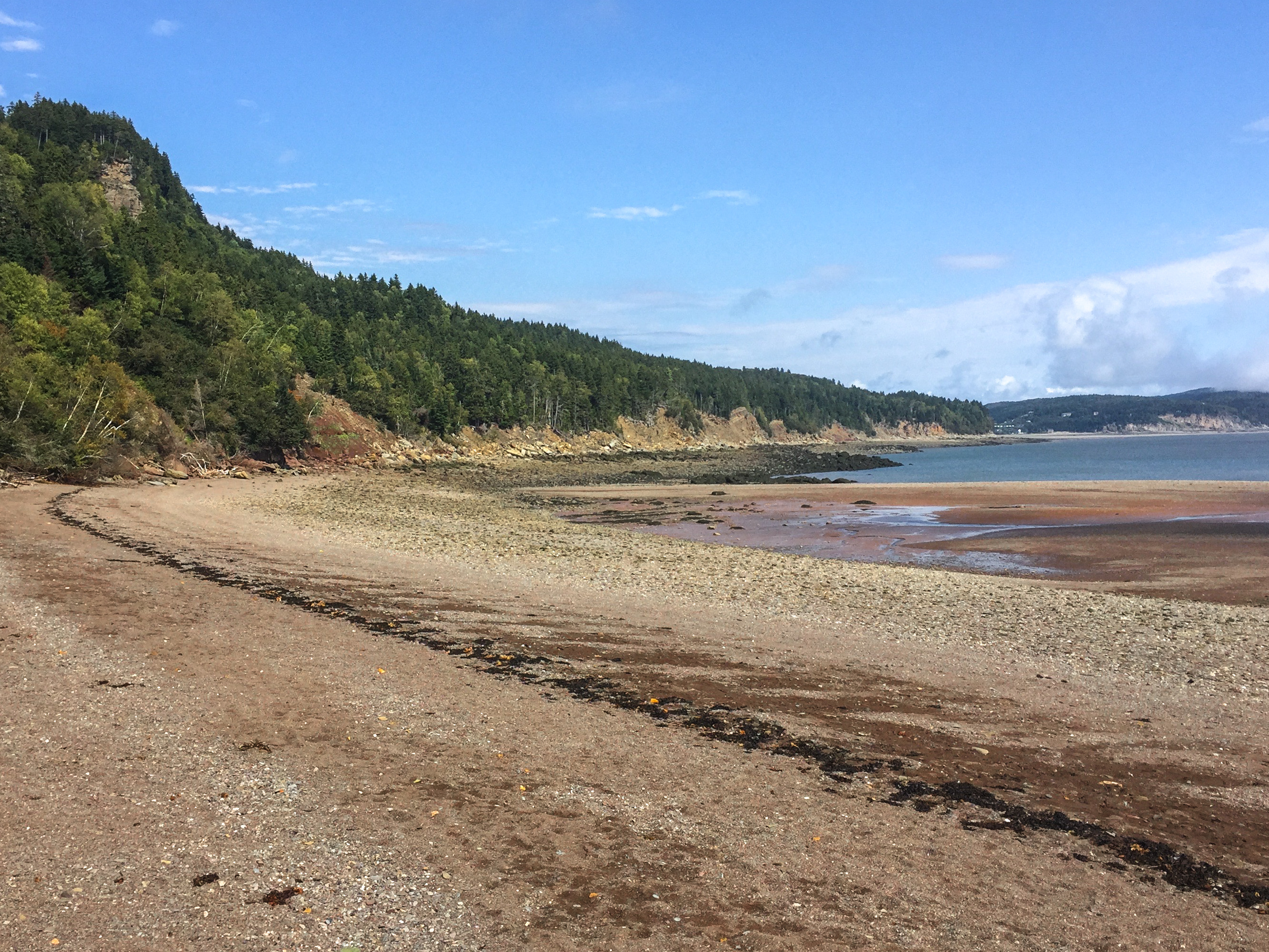 coastal-trail-beach-fundy-national-park-canada