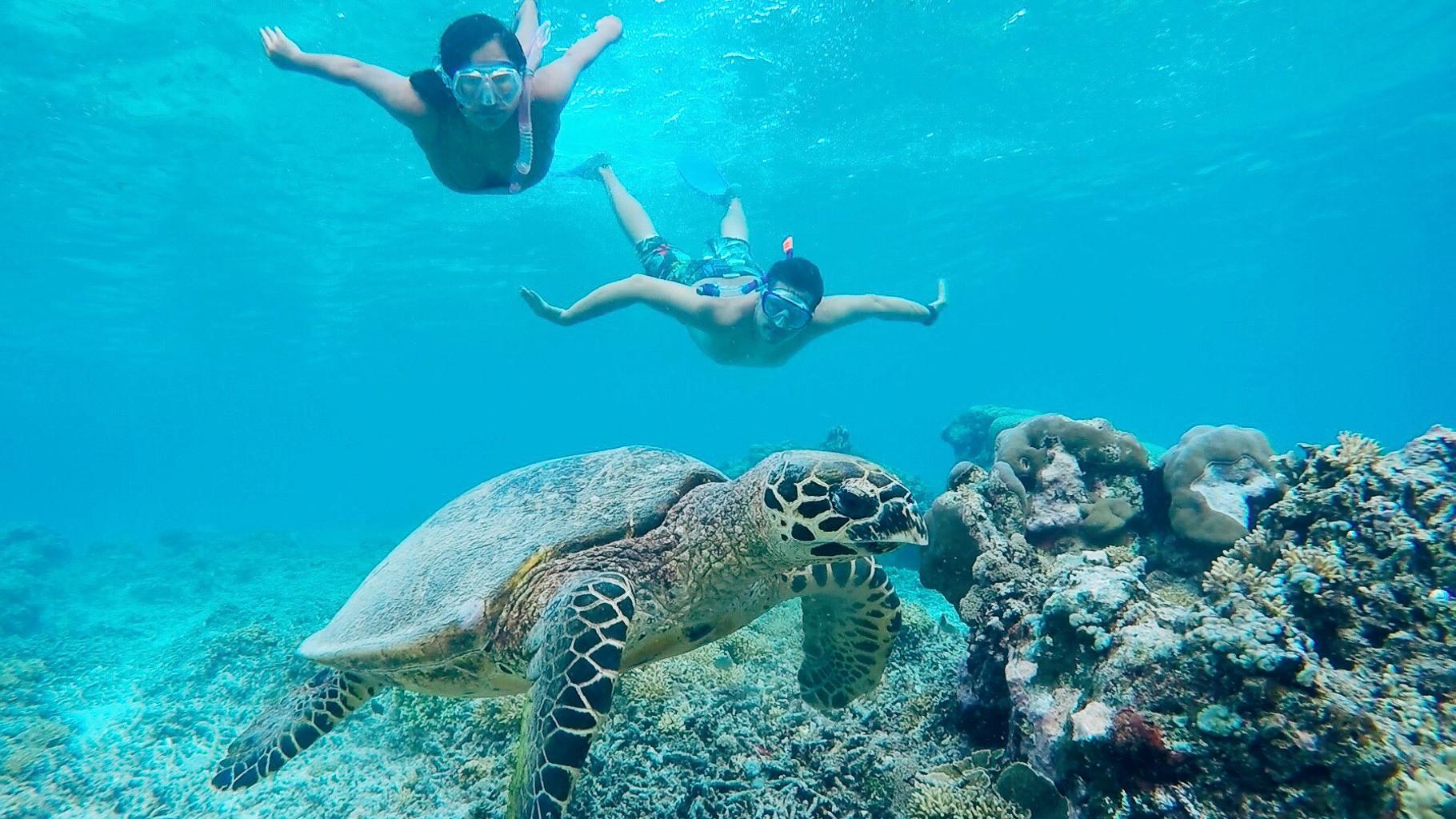 Gili Meno Indonesia Snorkeling