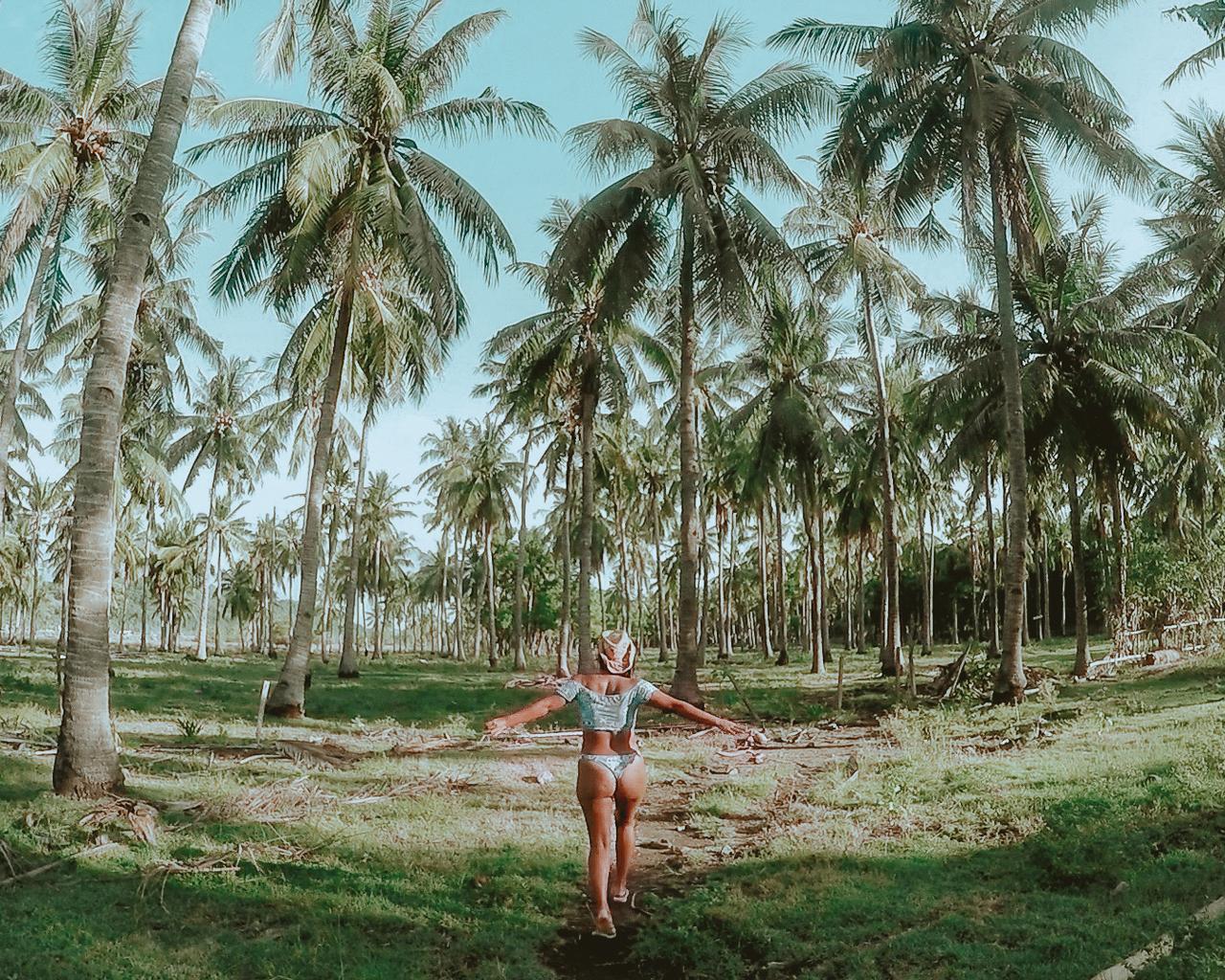 Indo Coco